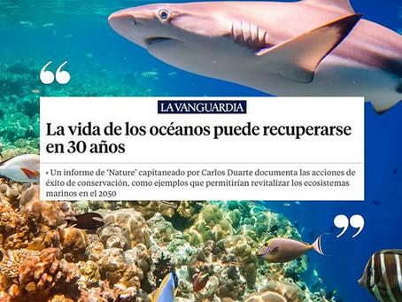 La vida de los océanos puede recuperarse en 30 años