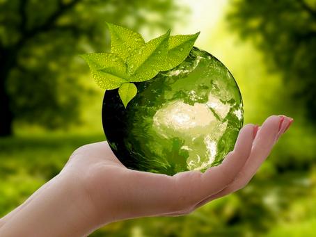 ¿Por qué educar para la sostenibilidad?