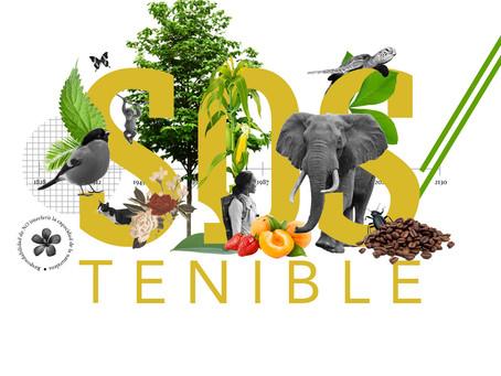 Ser 'sostenible' no es suficiente