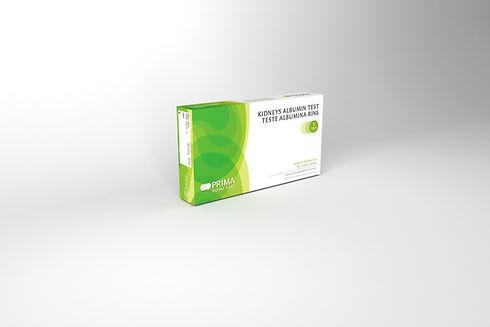 Kidneys Albumin.jpg