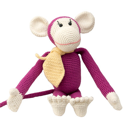 Momo the Monkey