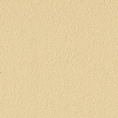 Polyanthus SCH147.jpg