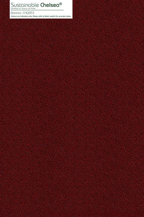 SUSTAINABLE CHELSEA Boronia CHQ033