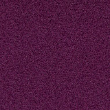 Foxglove SCH158.jpg