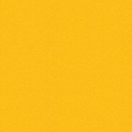 Sustainable Chelsea Sunflower