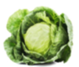 A bog standard stock image of a dead ordinary cabbage. art, artist, painting, contemporary painting, contemporary art