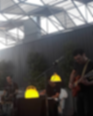 Toflang-live-11.png