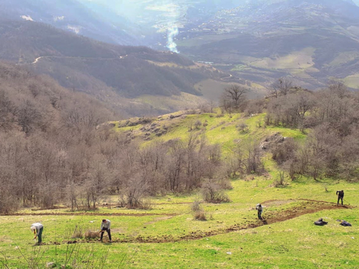 TECHNICAL REPORT (Construction and blazing of hiking trails in Togh, Artsakh)