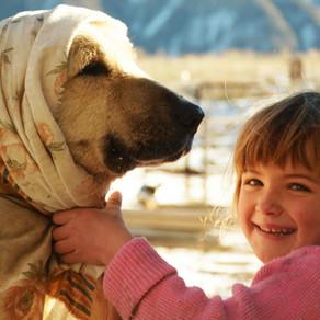 Artsakh's Janapar Trail Host Family Fundraiser