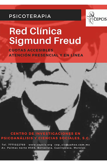 Red_Clínica_Sigmund_Freud.jpg