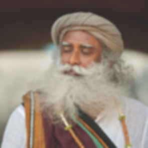 Sadhguru%20-%20PS022%20copy_edited.jpg