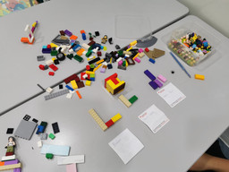 What is So Special about LEGO® bricks?