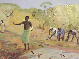 Small Seeds (sermon 2.17.19)