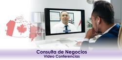 1  - Consulta de Negocios