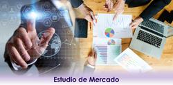 4 - Estudio de Mercado - 2