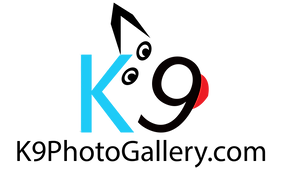 K9 LOGO WITH Gallery light blue.png