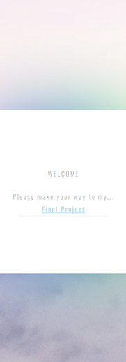 Web Project 2