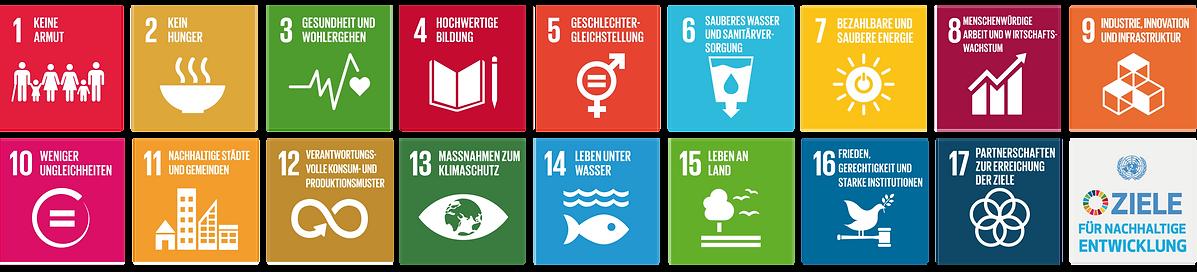SDG D 2r.png