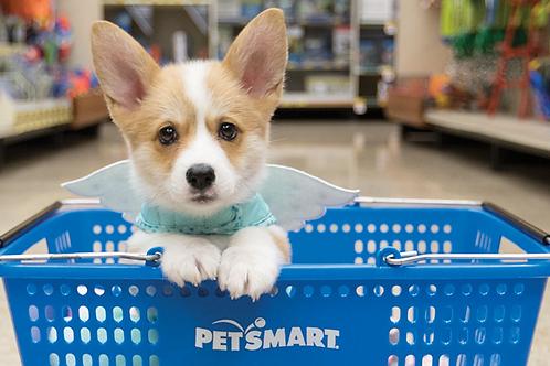$50 Petsmart Gift Card