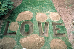 Love Grave, 2003, Installation from the exhibition Forefront, Indianapolis Museum of Art