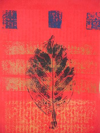 Leaf_Image_I.JPG