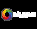 Logo BRTV_color_w.png