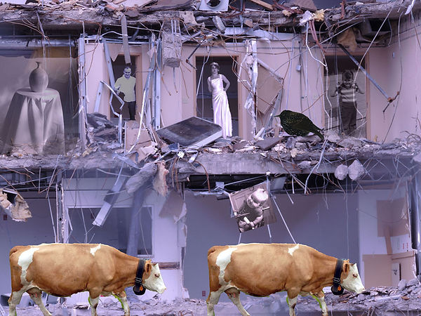 When_The_Cows_Come_Home.jpg