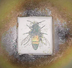 """Scan, detail from """"Bee@highstreet"""" by D. Wisely. Printing, paper, glue, powder, spay paint"""