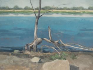 Eroded riverbank, Varennes