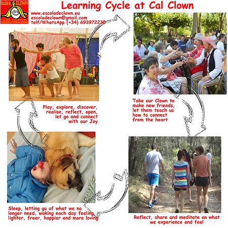 Learning Cycle at Cal Clown.jpg