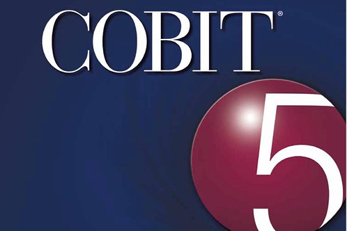 Self-assessment Guide: Using COBIT® 5