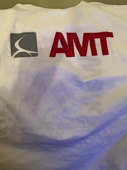 AMT Plcement Services