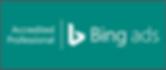 Bing Partner.png