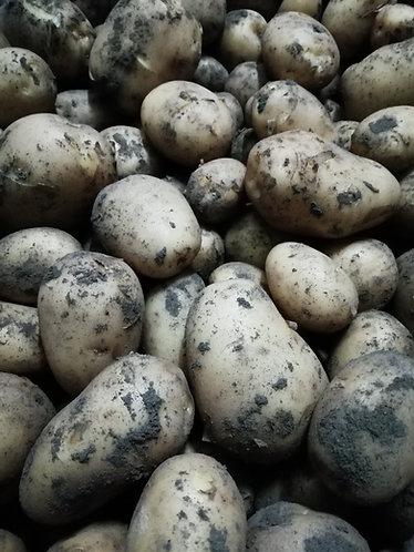 Nieuwe aardappelen prijs /kg