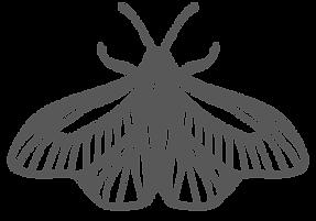 MoonlightSalon-Logo_Moth.png