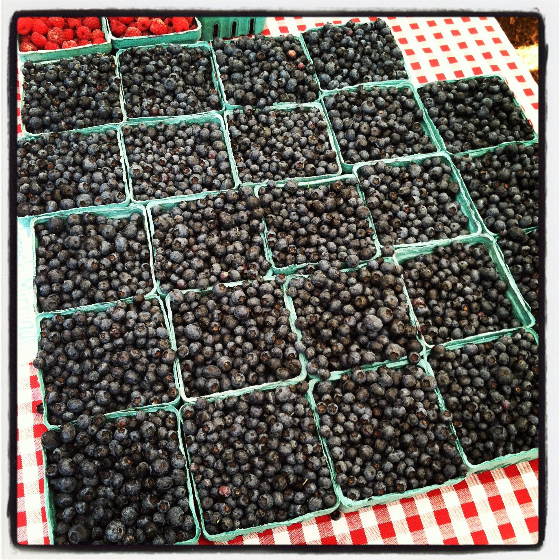 blueberry OCD geometry