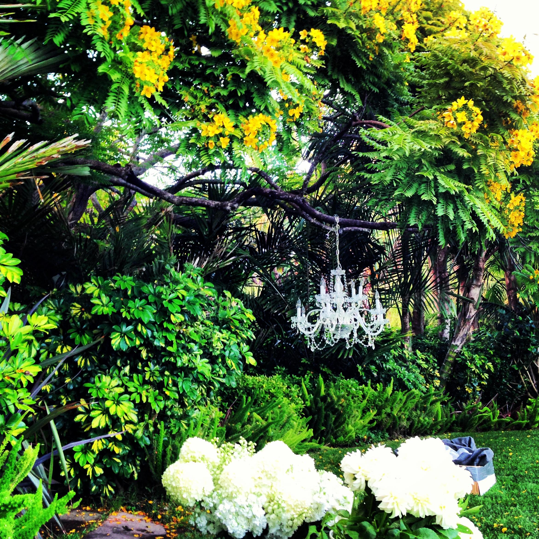 inner space garden