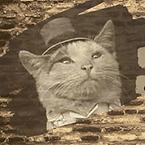 Alley Kat's Curiosities.png