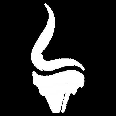 Liberty STEAM School Logo-09.png