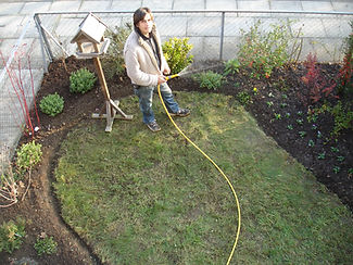 131111- Gillian's Garden 055.JPG
