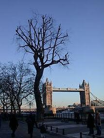 crownreduction-towerbridge.jpg