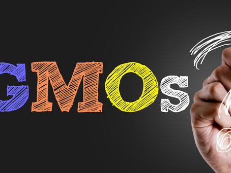 The Hype Around GMOs