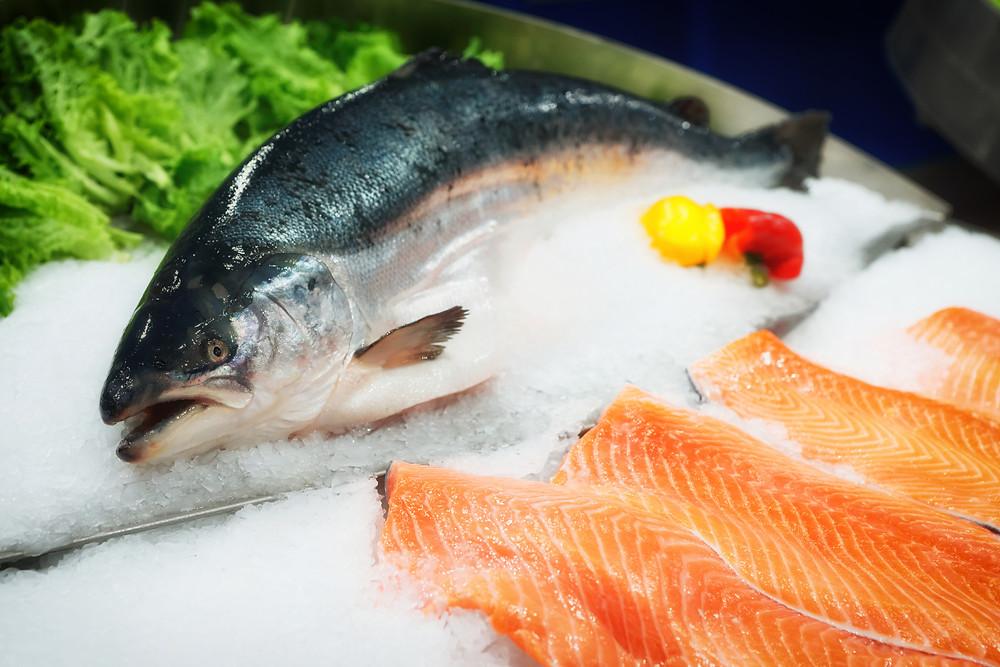 farm raised vs. wild caught salmon