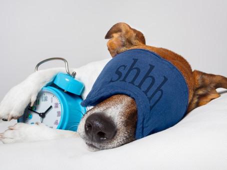 Benefit of Sleep