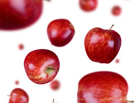 School Food Politics: Policy Regression