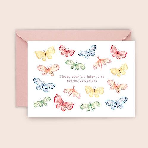Special Butterflies