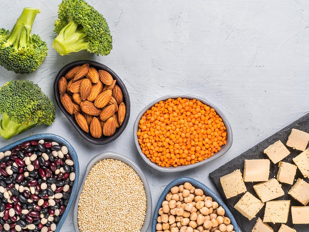 vegetarian plant protein