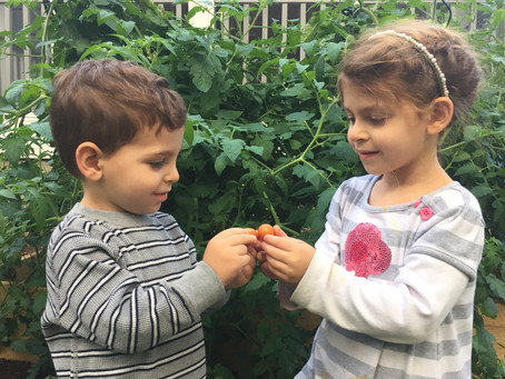 The Benefits of Family Gardening