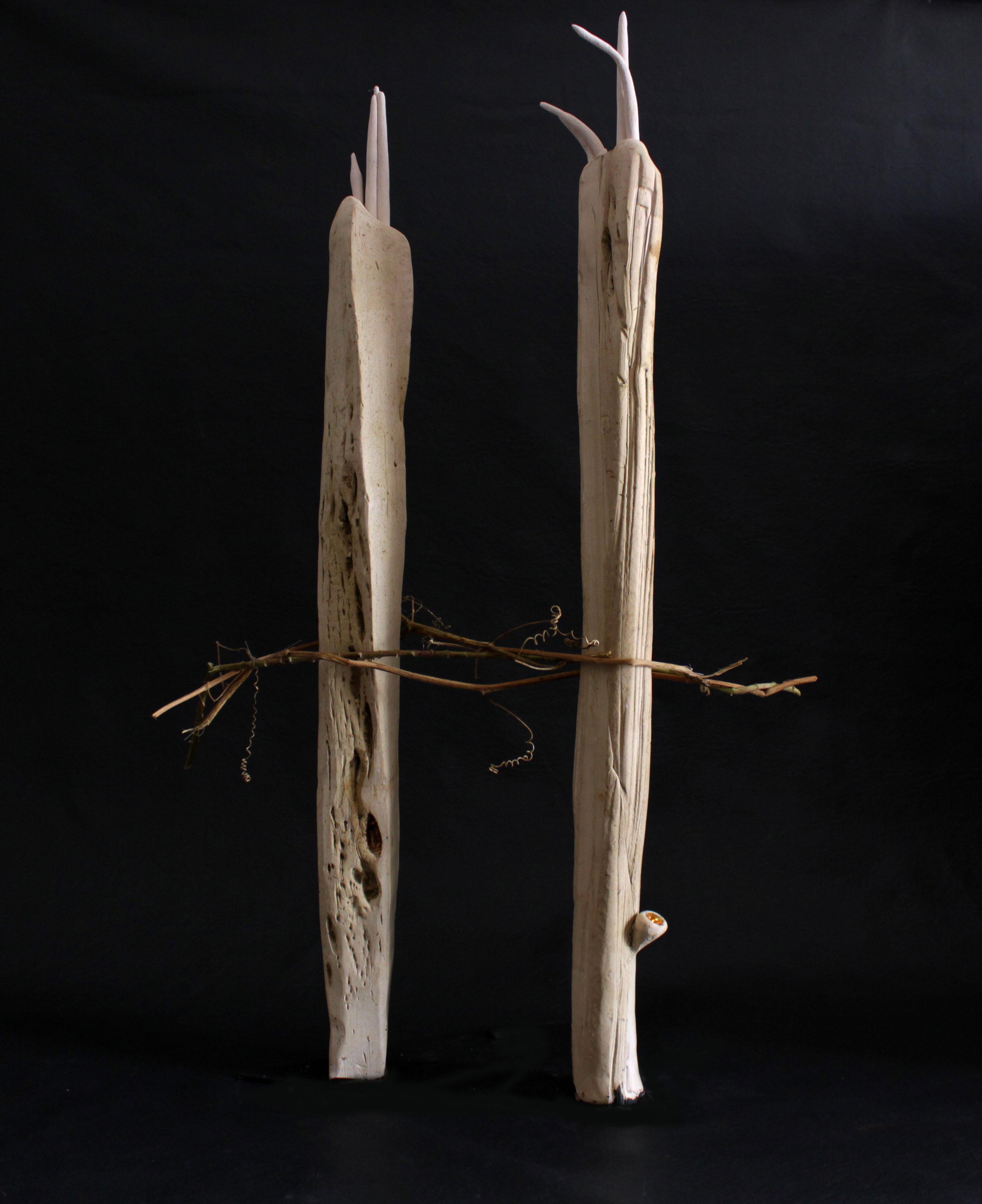 Cactus Filamentis II
