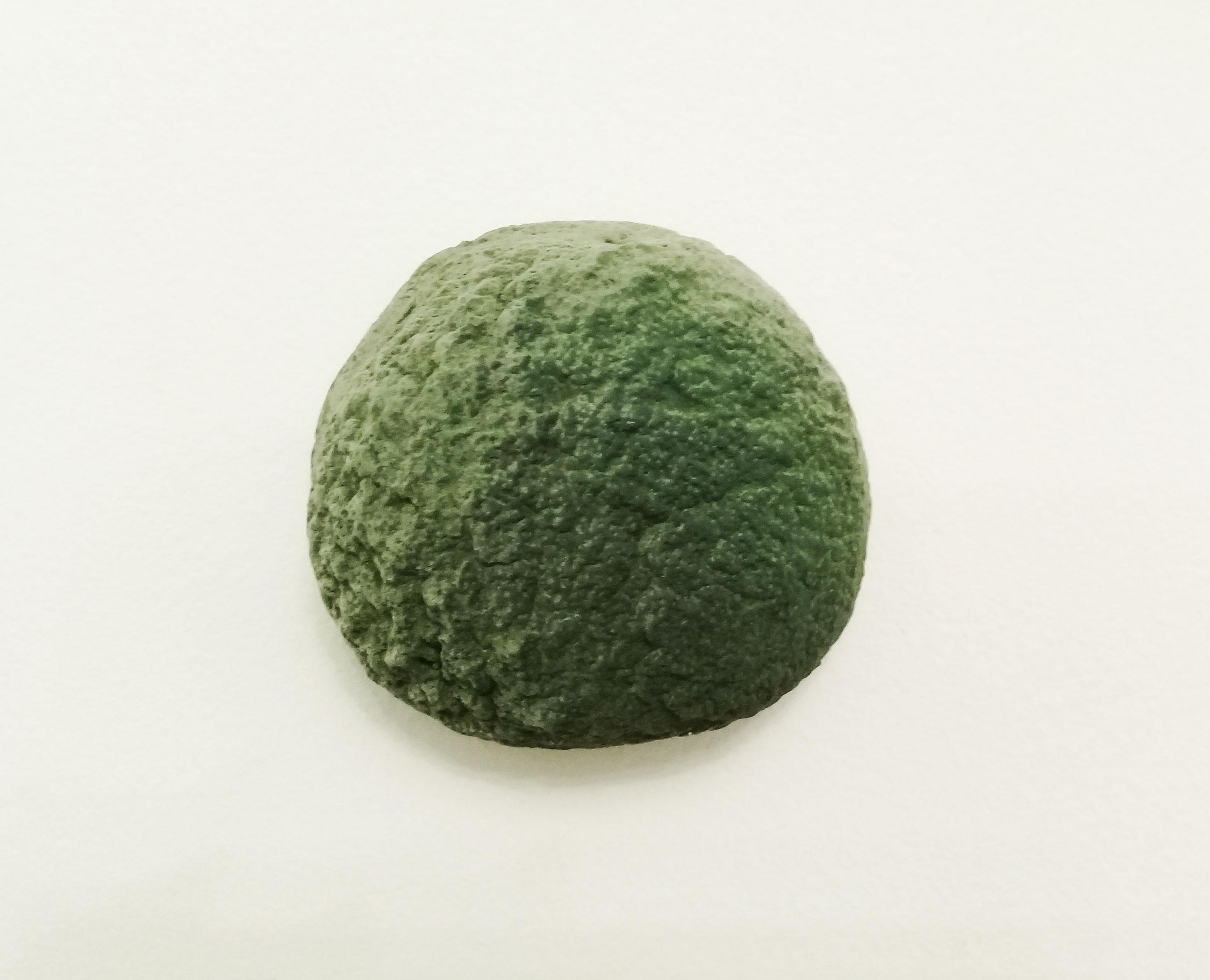 Musgo/ Moss